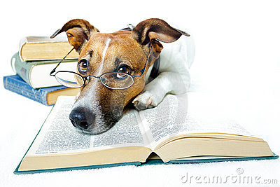 http://thumbs.dreamstime.com/x/dog-reading-books-23266795.jpg