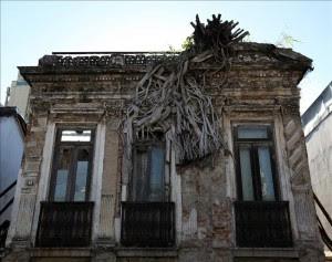 """Detalle de un árbol, reconocido porque sigue floreciendo aunque no tiene raíces, en la fachada de una casa de Río de Janeiro (Brasil) que se conoce como """"la casa del árbol"""" (""""a casa da árvore"""").EFE"""