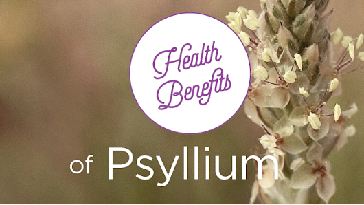 The Health Benefits of Psyllium