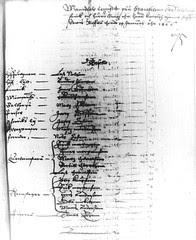 Pohjalainen lippukunta 1606