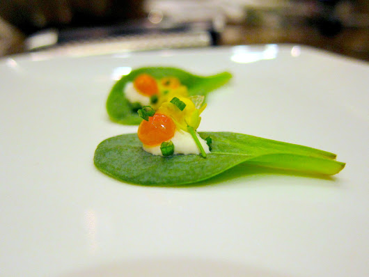 """Oysters and Pearls"" Oyster leaf with Salmon Roe"