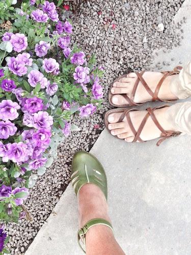 shoe per diem july 3, 2012 - frolic