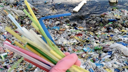 EU proposes ban on plastic straws, cutlery | The EcoPlum Daily