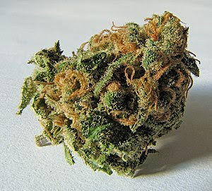 Cannabis is another commonly used recreational...