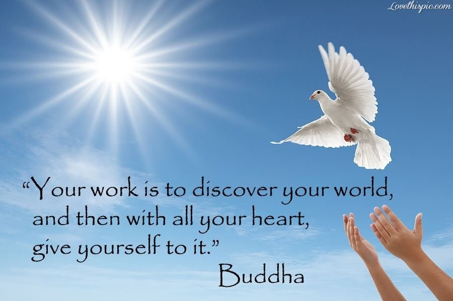 Beautiful Buddha Quotes Parryzcom