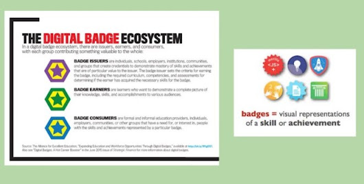 Digital badges as evidence of flexible pathways - Innovation: Education