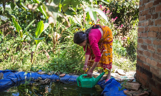 How waste water reuse and recycling can reduce water drudgery for women - Nature Khabar
