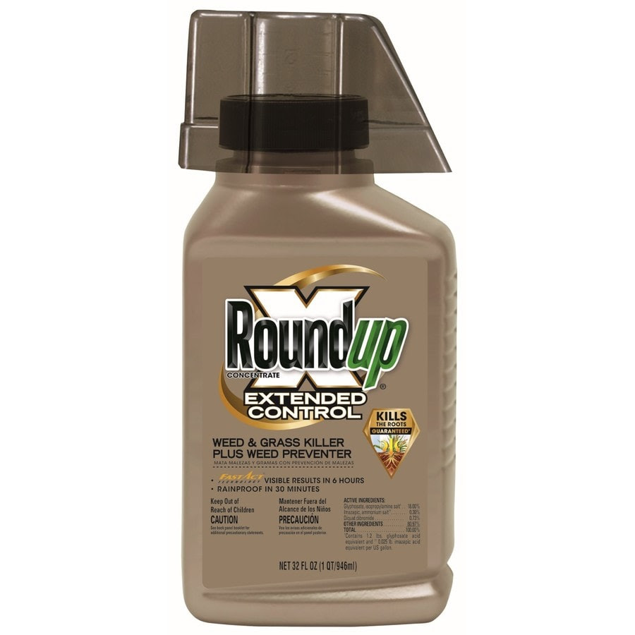 Roundup Extended Control Weed Preventer Ii 32 Oz Concentrated Weed And Grass Killer In The Weed Killers Department At Lowes Com