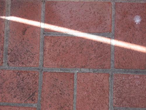 Shadow _ 8909