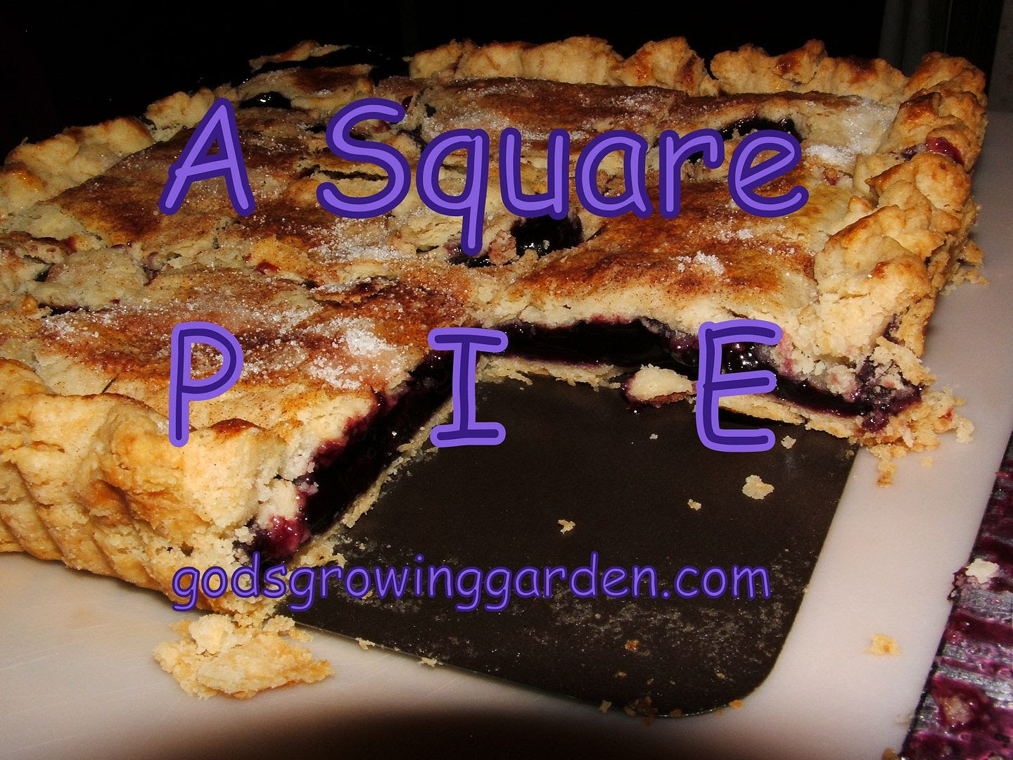 Square Pie by Angie Ouellette-Tower for godsgrowinggarden.com photo 012_zpsd37e1d67.jpg