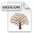 TNG: GEDCOM – an introduction | ONS Analytics
