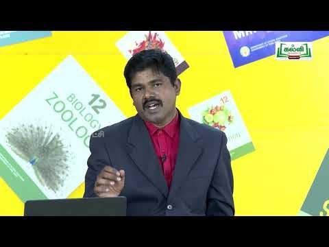 முப்பரிமாணம் Std 12 TM Bio Zoology மூலக்கூறு உயிரியல் Part 02 Kalvi TV