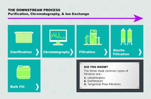 Anticipated Advancements for Downstream Processing