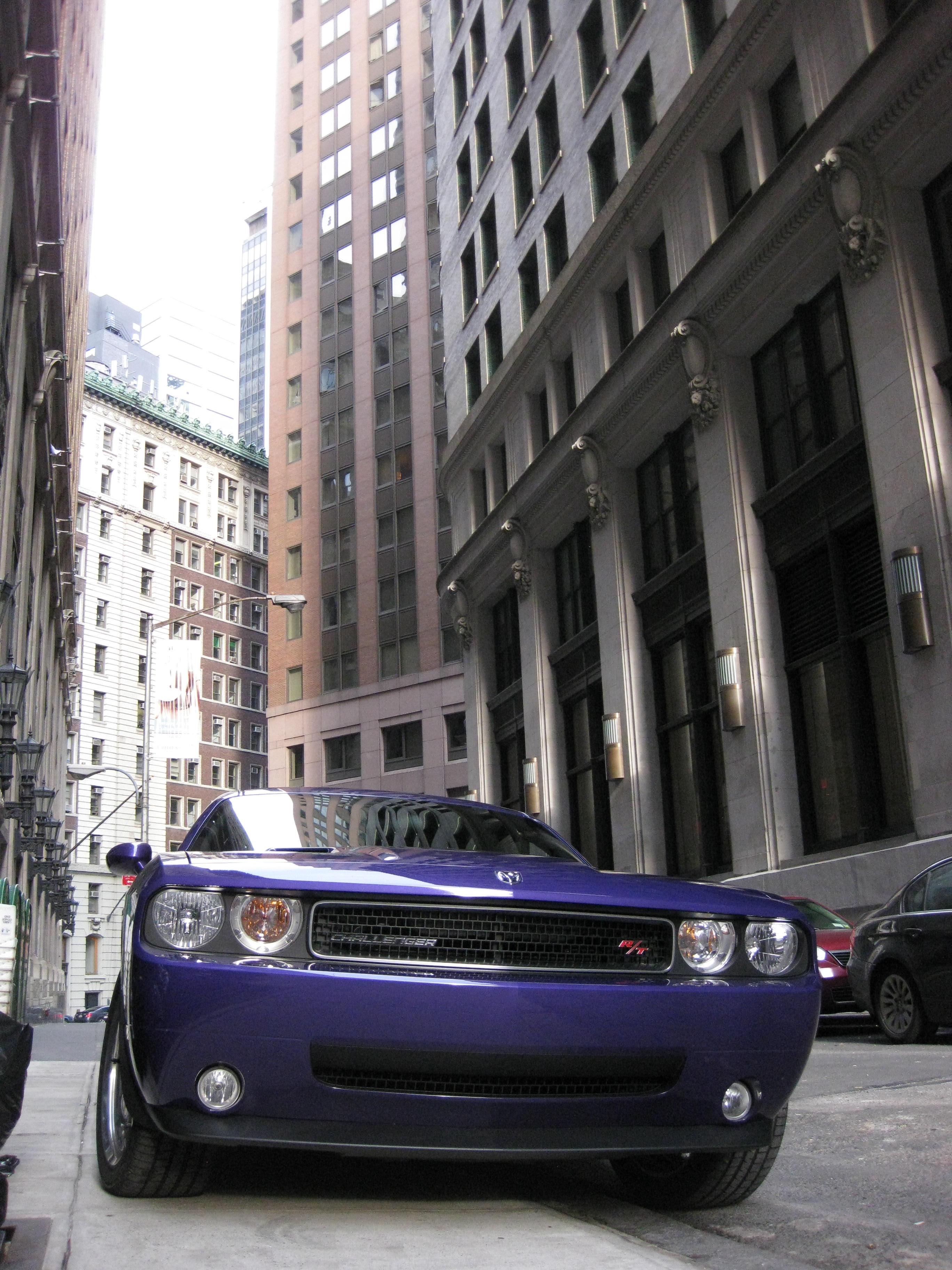 2010 Plum Crazy Dodge