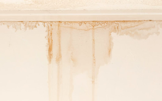 Why You Shouldn't Ignore Ceiling Water Stains | The Roof Doctor