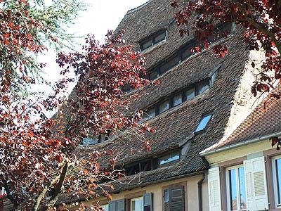 toits et feuillages.jpg
