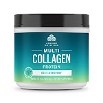 Multi Collagen Protein Rest + Recovery - Mixed Berry Book 3-Pack | Ancient Nutrition - collagen