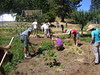 Garden Crew