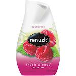 Renuzit Gel Air Freshener, Raspberry - 7 oz bottle