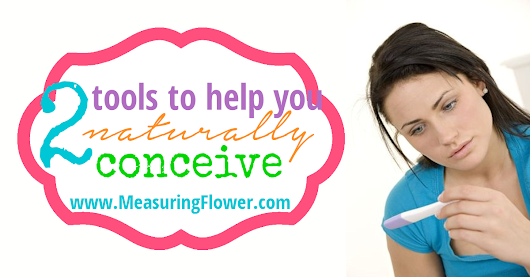 2 Tools to Help You Naturally Conceive {Plus a Free Printable Fertility Chart} - Measuring Flower