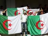 supporter drapeau Algérie  Coupe du Monde 2014