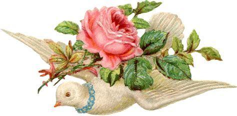 Valentine Scrap Dove Image   The Graphics Fairy