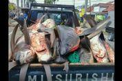 5 Berita Populer Nusantara: ABG Diperiksa karena Status Hina Polisi di Facebook hingga Viral Foto Belasan Hiu Mati di Mobil Pikap