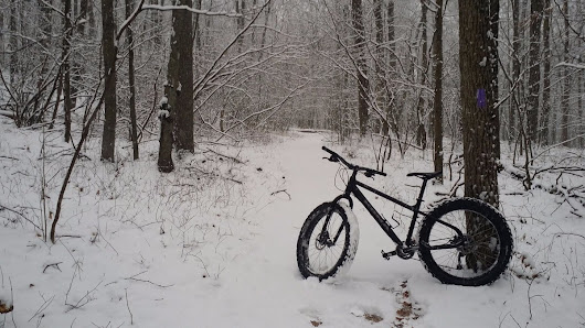 "John M. Joy on Twitter: ""Wo in the Sno, Naugatuck State Forest (West Block) southern end of the purple trail @ConnDEEP """