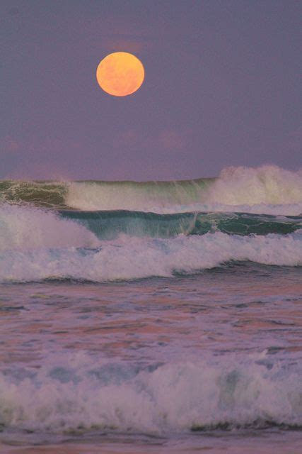 full moon  ocean moon  sun pinterest