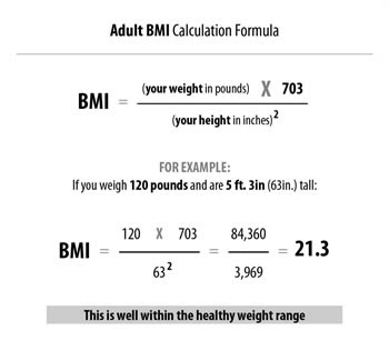 body fat percentage calculator using height and weight