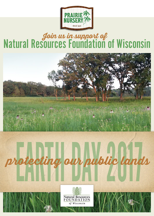 Protecting and nurturing with native plants: Earth Day 2017