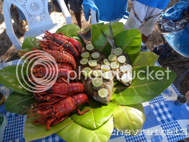 http://i1252.photobucket.com/albums/hh578/chevrette13/Madagascar/DSCN1330800x600_zps5e551e93.jpg