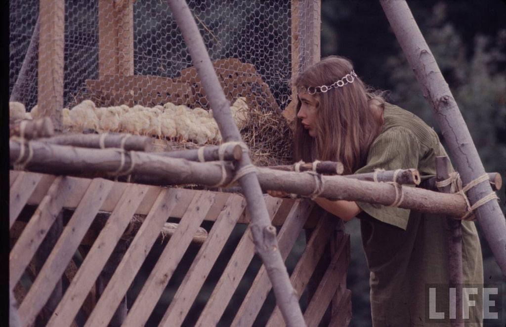 O festival de Woodstock em números e imagens 54