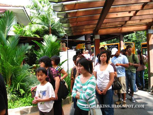 queue at sentosa 2