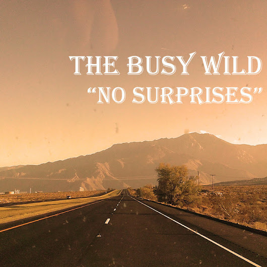 No Surprises, by The Busy Wild