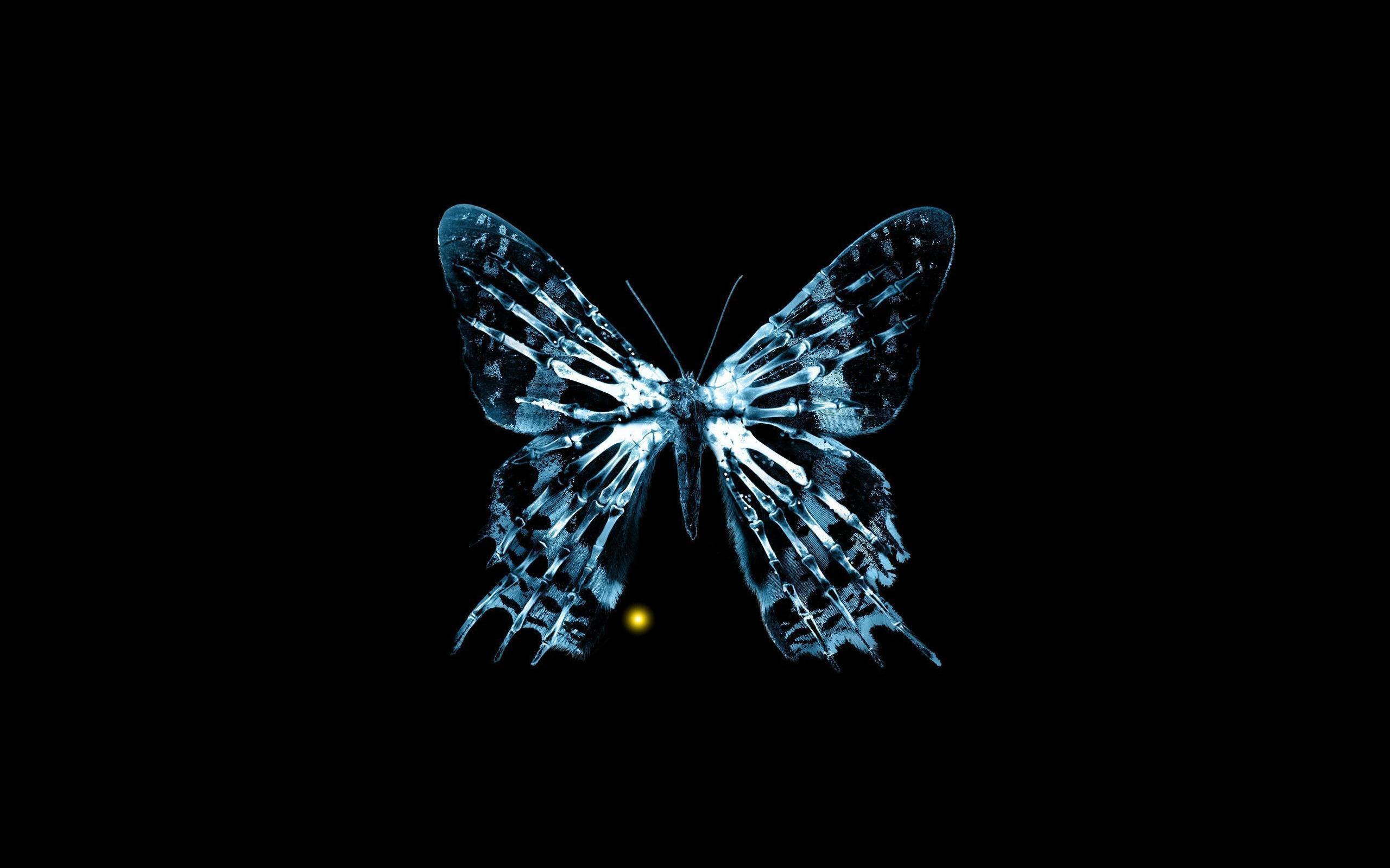 Blue Butterfly Skeleton HD desktop wallpaper : Widescreen ...