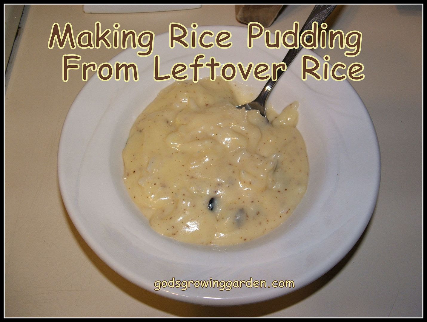 Rice Pudding by Angie Ouellette-Tower for godsgrowinggarden.com photo 005_zps8029b527.jpg