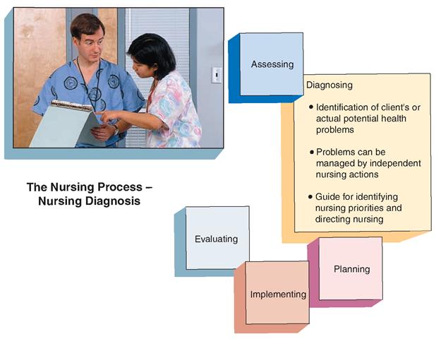 Nursing Diagnosis and Planning (The Nursing Process) Part 1
