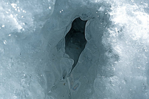 Vulval Ice