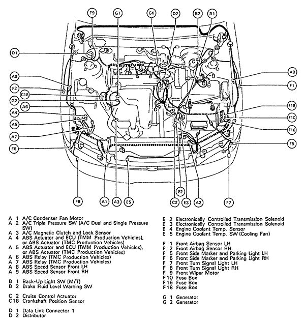 Toyota V4 Engine Diagram Wiring Diagram Page Tan Fix Tan Fix Granballodicomo It