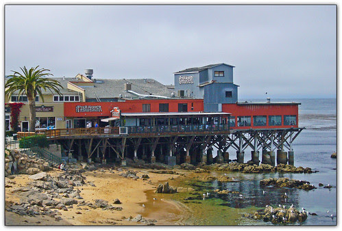 FishHopper on Cannery Row