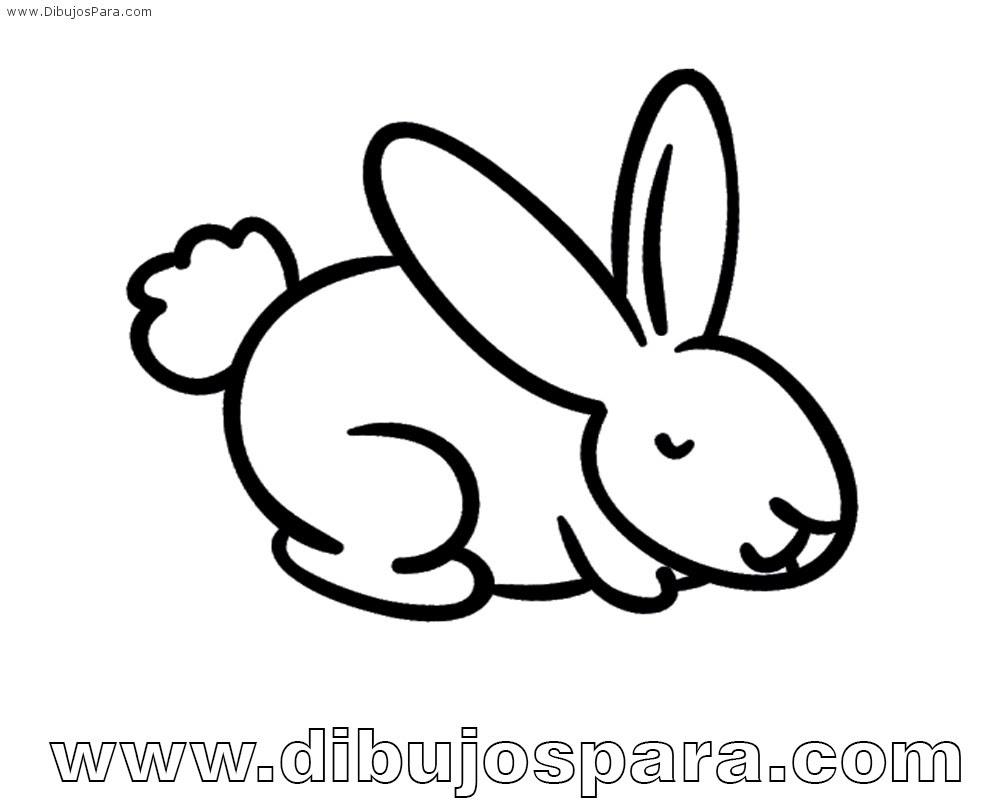 Dibujo De Conejo Facil Para Colorear Dibujos Para Colorear