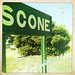 Welcome to Scone!