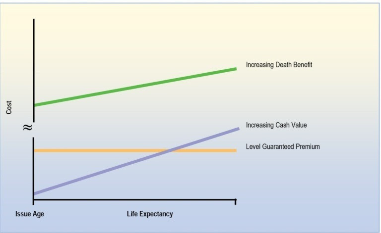 Deciding Which Life Insurance Policy Is Right For You ...