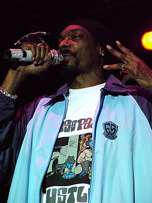 Snoop Dogg performing at City Stages festival ...