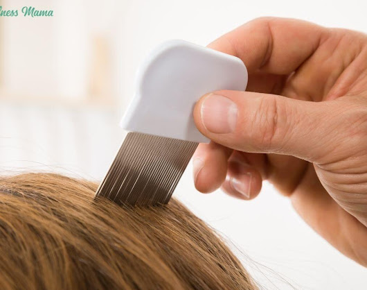 Natural Ways to Prevent & Fight Drug Resistant Head Lice