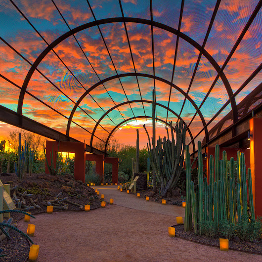 Where to Watch the Sunset in Scottsdale