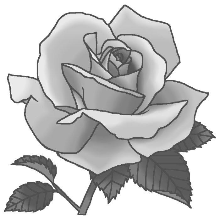 名称不明モノクロバラの花1ばらのイラスト花のイラスト素材お花と