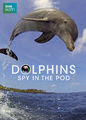 Dolphins: Spy in the Pod | filmes-netflix.blogspot.com
