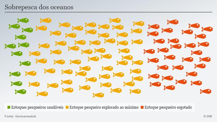 Pesca descontrolada está esgotando as reservas de alimento humano nos oceanos